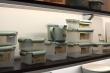 Phibo Eco-Style контейнеры